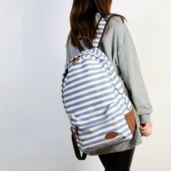 Stripes Printed Blue Canvas Backpack